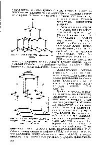 алмаз число и характер связей