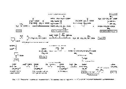 схема синтез гистидина