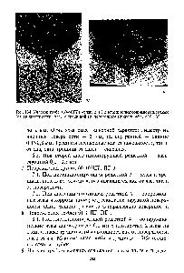 микрошлифы способы и методы изготовления